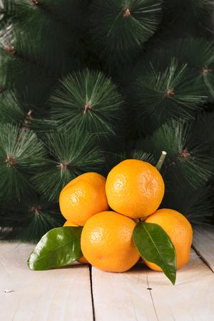 mandarine: Fresh mandarine with leaves on wooden table, fir tree behind