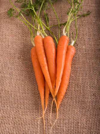 sacking: Fresh young carrots with leaves on sacking Stock Photo