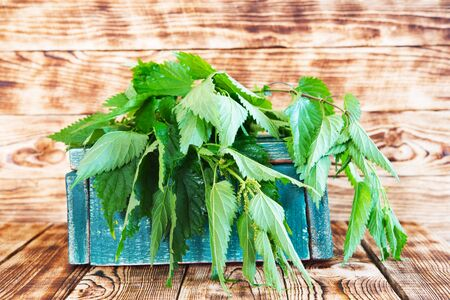 Fresh nettle in a box on old wooden table