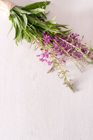 Bundle of fresh medicinal willow-herb on the table, daylight