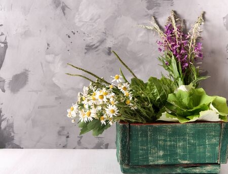 Armful of fresh medicinal plants in a box on the table, daylight Standard-Bild