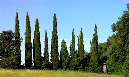 Italian Landscape Stock Photo
