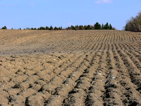 furrows: Field full of furrows, all ready for planting. Stock Photo
