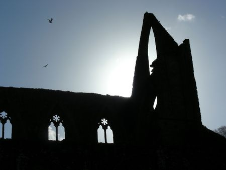 abbey ruins abbey: Sunlight glowing behind the ruins of Tintern Abbey, Wales.