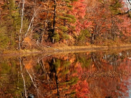 Colorful trees reflecting in the calm waters of a lake, Muskoka, Ontario, Canada. Stock Photo - 832447