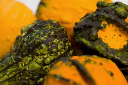 bumpy: A bunch of colorful, bumpy looking, fall gourds. Stock Photo