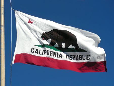 The great bear on the California flag.