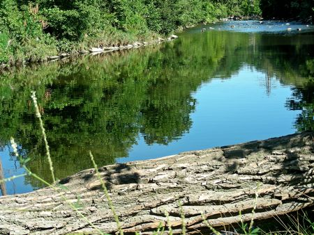 Hard to believe this is in the middle of Toronto. The Don River on a peaceful summer day.