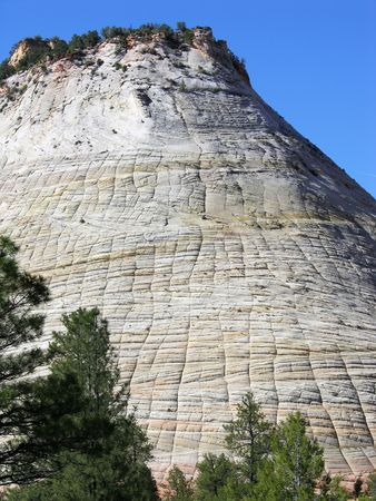 Rock formation with a terrific checkerboard pattern on it, Zion National Park, Utah.         版權商用圖片