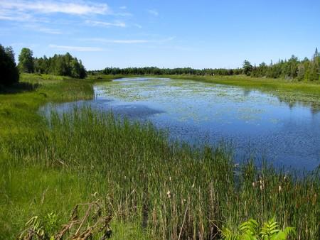 A calm peaceful inlet on Georgian Bay, Ontario.