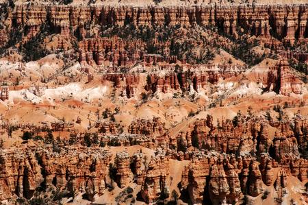 A line of hoodoos at Bryce Canyon, Utah