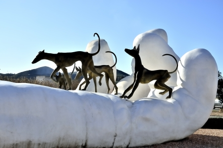 Tribute to the Ibizan hounds on the island