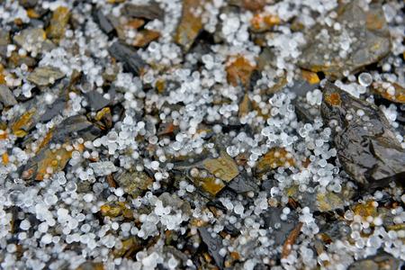 Solid precipitation hail in yushan
