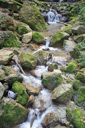 small stream running over moss covered stones photo