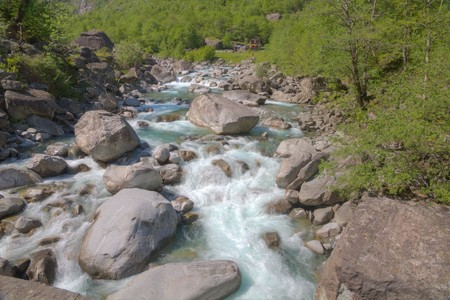 bluish: bluish colored mountain stream Maggia flowing over rocks in an untouched green scenery