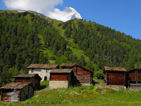 small swiss village settlement of wooden houses covered with stone roofes in front of forest and hugh snow covered alpine mountains on a sunny summer day in Wallis Switzerland