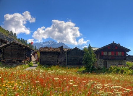 wallis: small swiss village settlement of wooden houses on a flower meadow in front of forest and hugh  alpine mountains on a sunny summer day in Wallis Switzerland