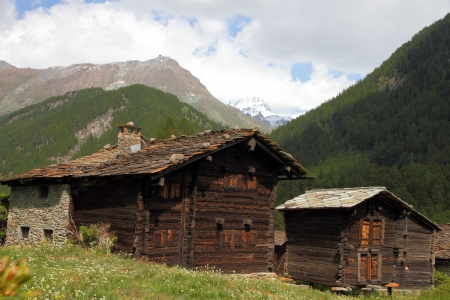 hugh: small swiss village settlement of withered wooden houses on a flower meadow in front of forest and hugh  alpine mountains on a sunny summer day in Wallis Switzerland