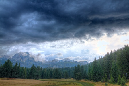 Haunted woods of National Park Durmitor with bad weather and mighty rocky peaks, Montenegro Reklamní fotografie
