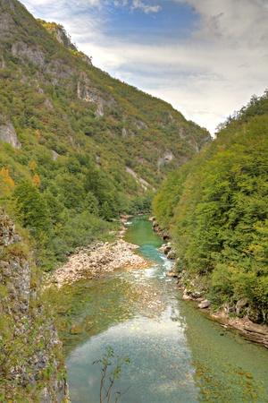 the deepest: R�o Tara con su hermoso verde agua verde a trav�s del ca��n de Tara debajo de un puente. Uno de los ca�ones m�s profundos del mundo y patrimonio mundial, Montenegro de la UNESCO.