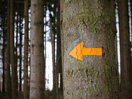 yellow arrow giving directions in the woods, concept for help when being lost, support, orientation, a way out of the woods and out of trouble, guiding, counselling, vignette added Stock Photo