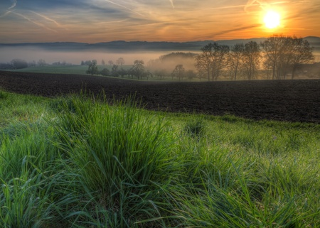grass glistening with morning dew drops at sunrise at a field with foggy trees and hills in the background
