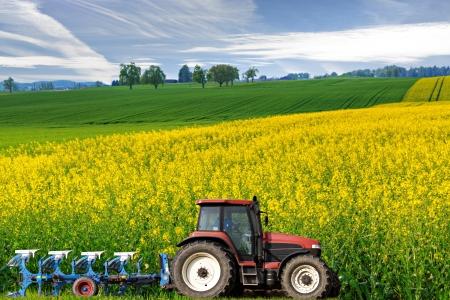 traktor: Traktor mit Pflug f�hrt entlang sch�nen weitl�ufigen bl�henden hell gelb Raps Felder, Konzept f�r Landwirtschaft-Gesch�ft Lizenzfreie Bilder