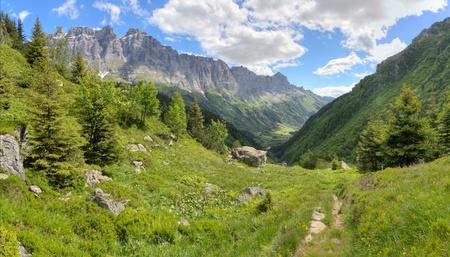 swiss alps: Szwajcarskich górach alpejskich z lasu, łąki, strome ściany i doliny w pobliżu przełęczy Susten w lecie, Szwajcaria