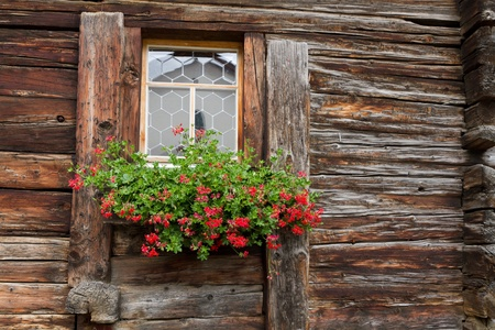 window of a old wooden withered house decorated by red geranium, Switzerland photo