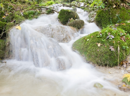 fresh. clean, clear, forest stream splash down over moss covered stones in autumn woods Stock Photo - 16851923