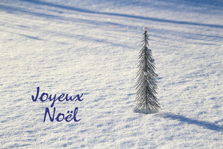 joyeux: Christmas concept. Silver fir on the bright snow with the phrase Joyeux No�l.