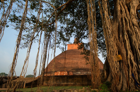 Jetavaranama dagoba stupa is the largest stupa in sri lanka (400ft) , and one of the largest brick structure of the world, Anuradhapura, Sri Lanka.