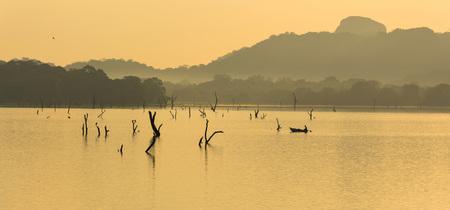 Fisherman at kandalama lake, dambulla, sri lanka
