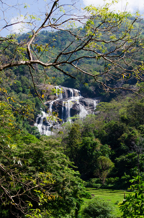 Rathna Ella, at 111 feet, is the 10th highest waterfall in Sri Lanka, situated in Kandy District. The main occupation of the villagers in Rathna Ella is paddy cultivation Imagens