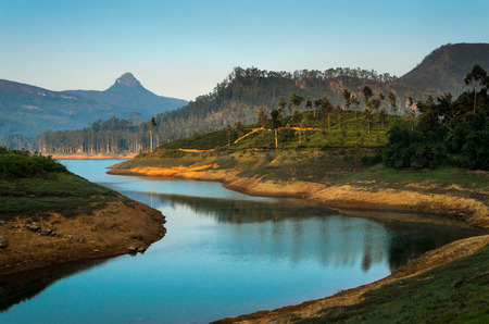 The sacred Sri Pada mountain also known as Adams peak in Sri Lanka, seen from maskeliya reservoir Banco de Imagens
