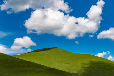 Blue sky green grass Stock Photo