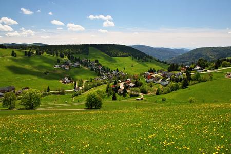 Paesaggio nella Foresta Nera in Germania Archivio Fotografico - 71074921