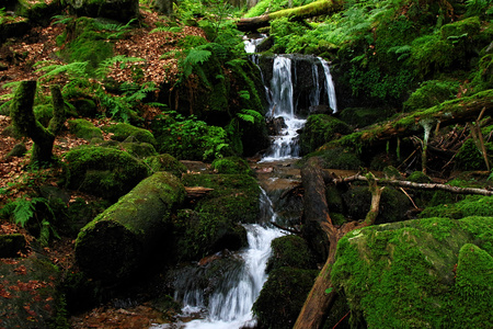 waterfall in the Black Forest in Germany Stock Photo