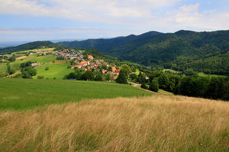 landscape in the Black Forest in Germany