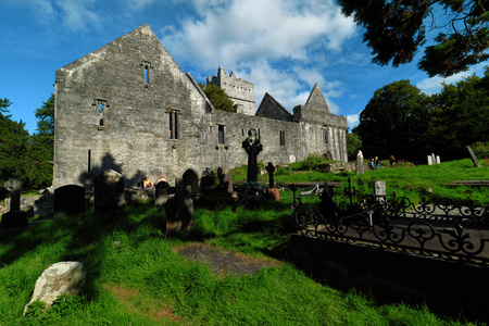 Ireland, Co Kerry, Muckross Abbey, Killarney Stock Photo