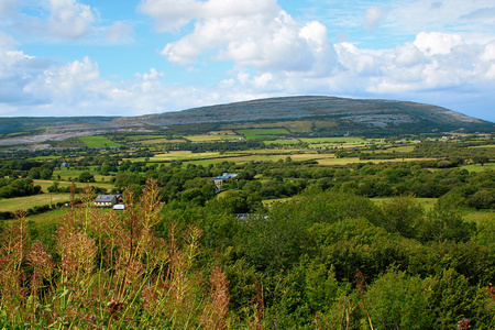 northern ireland: Beautiful nature and landscapes of Ireland