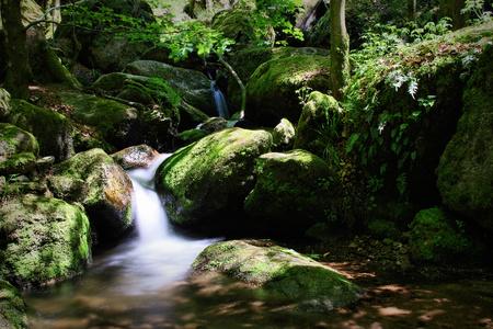 Gertelbach waterfalls, Black Forest, Germany