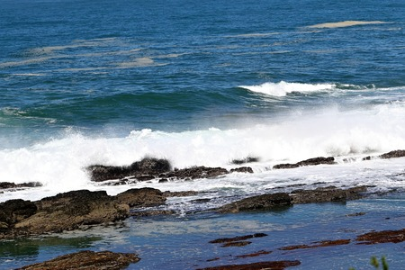 skirts: Impressions of the coast on the Cape of Good Hope, South Africa