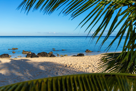 Beach and holiday impressions with palms on Mauritius