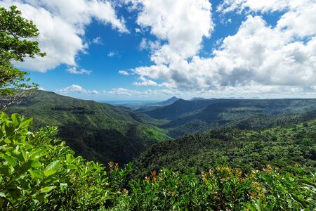 Panoramic view of Black River Gorges National Park, Gorges Viewpoint in Mauritius. Banco de Imagens