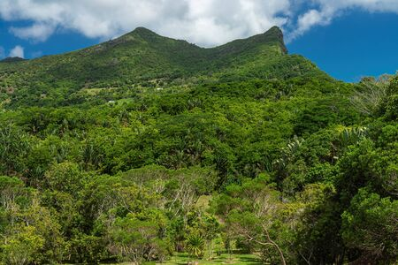 Panoramablick auf den Black River Gorges National Park, Gorges Viewpoint in Mauritius. Standard-Bild