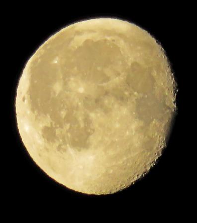 moonshine: Cream Morning Moon