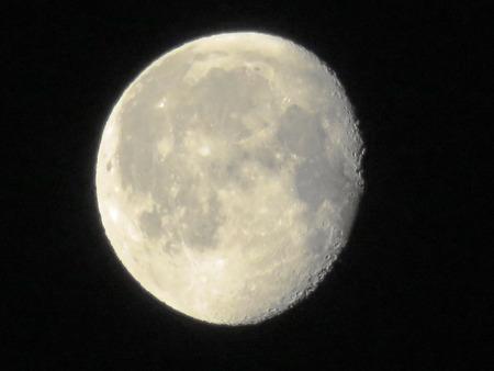 moonshine: White Morning Moon