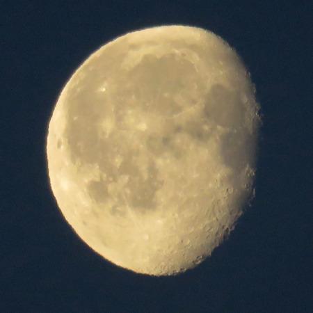 moonshine: Moon on deep blue sky