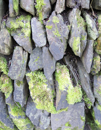 dry stone: Dry Stone Wall with Lichen